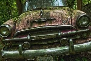 Is Black Pepper a Nootropic - Rusty Old Car
