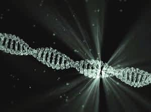 The Best Supplement for Brain Function and Memory - Mind Lab Pro - Broken DNA Link