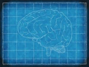 The Best Supplement for Brain Function and Memory - Mind Lab Pro - Brain Blueprint