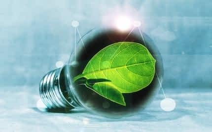 What's the Best Nootropic for Athletes - Light Bulb Burning Clean Energy