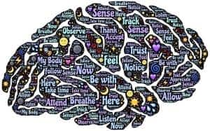 The Best Supplement for Brain Function and Memory - Mind Lab Pro - Awakened Mind