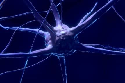 The Best B Vitamins for Energy - Brain Cell