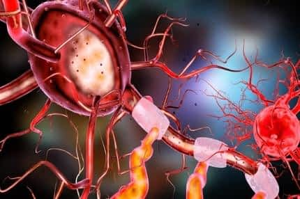 Best Supplement for Energy and Concentration - Healthy Brain Cell