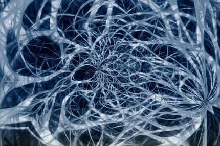 Best Supplement for Energy and Concentration - Healthy Network of Nerves
