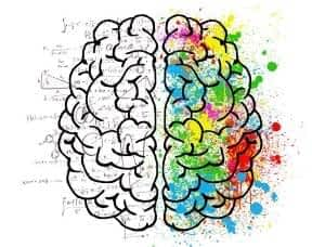 The Best Supplement for Brain Function and Memory - Mind Lab Pro - Logical vs Creative Brain Illustration