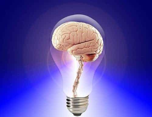 Is Alpha Lipoic Acid a Nootropic - Brain Inside a Lit Lightbulb