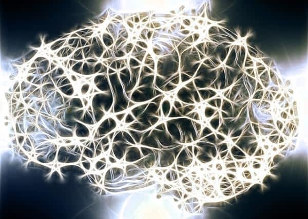 How does CoQ10 Benefit the Brain - Brain with Energized Neurons